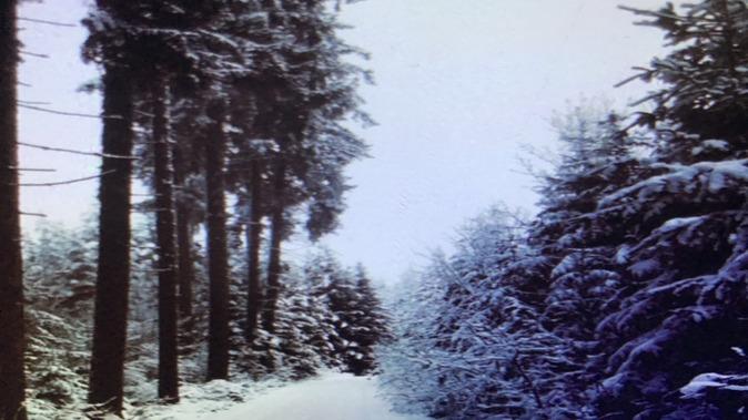 Weihnachtswunsch ✨